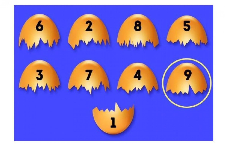 Melyik tojáshéjhoz passzol az 1-essel jelölt darabka?
