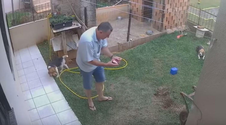 A kamionsofőr véletlenül felrobbantotta az egész kertjét