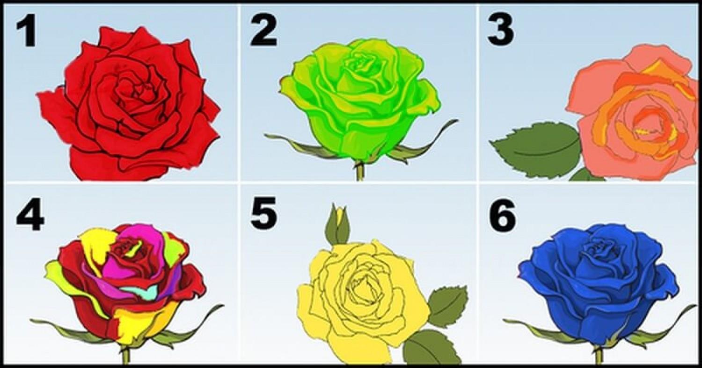 Személyiségteszt: Válaszd ki azt a rózsát, amelyik szerinted a lelkedet képviseli