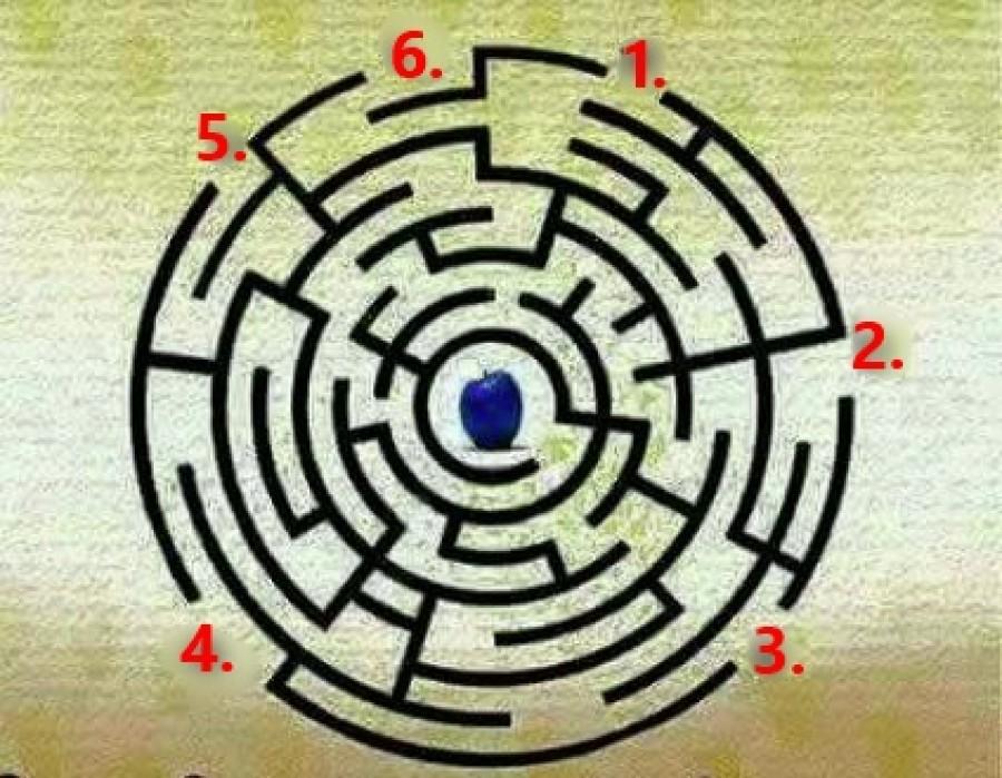 Melyik kapun kell elindulnod, ha meg akarod szerezni a szilvát?